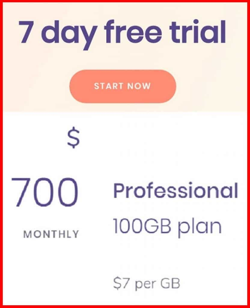 Professional plan 100 GB cost $700