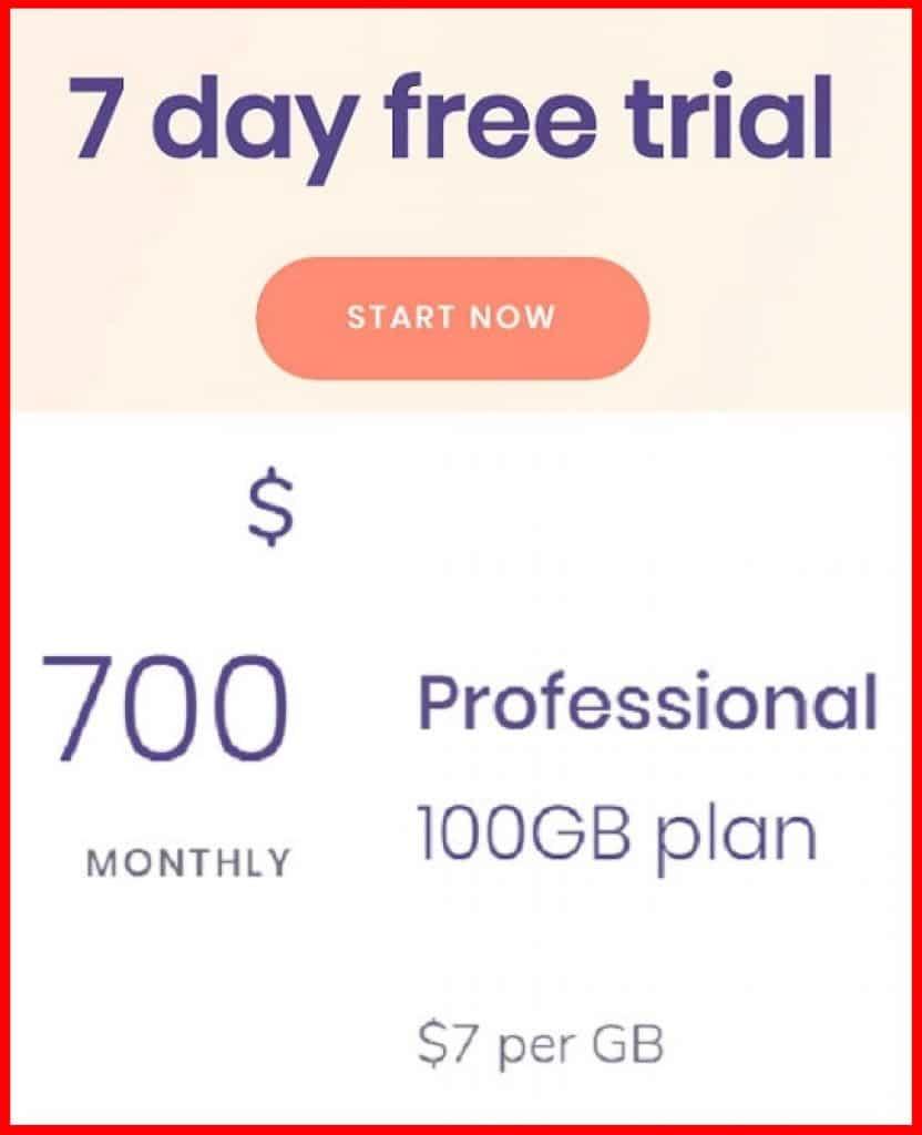 Professional plan 100 GB cost $700
