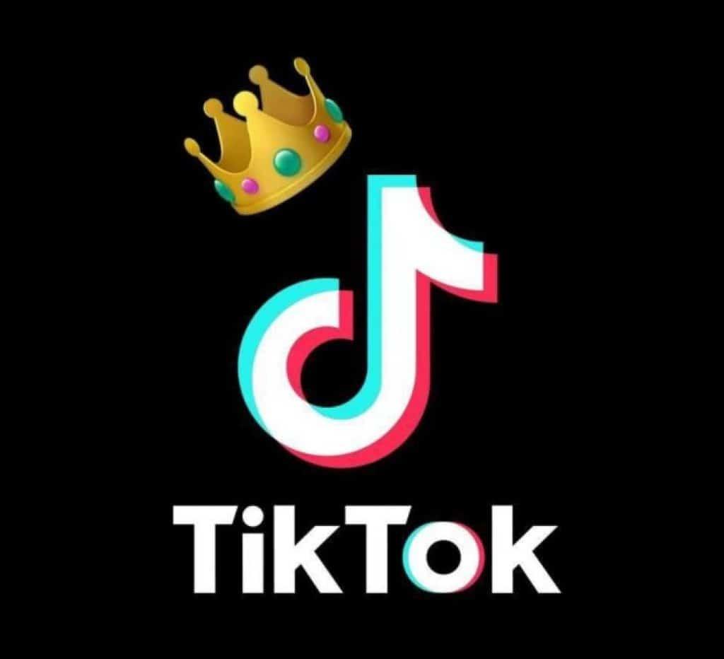 TikTok automation tool